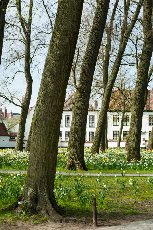 Bruges2011-29