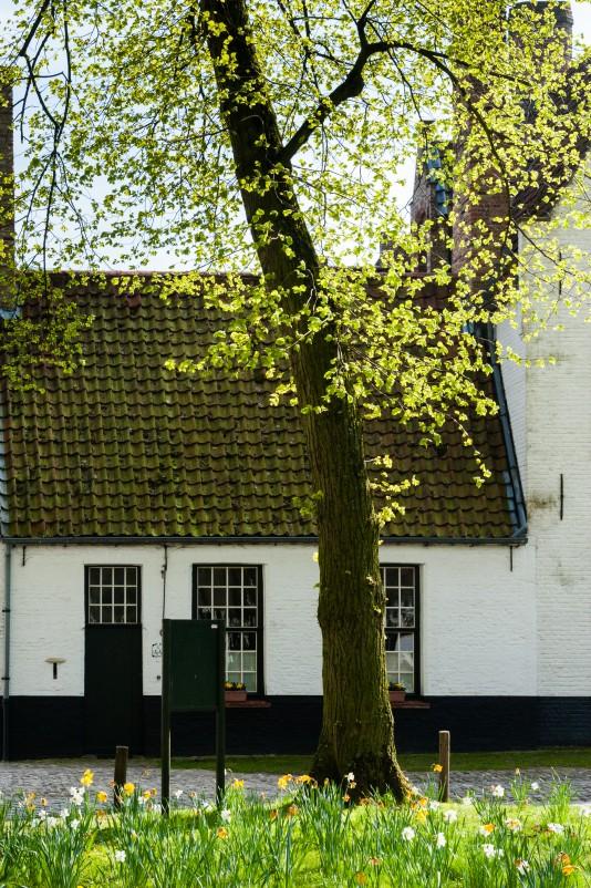 Bruges2011-33
