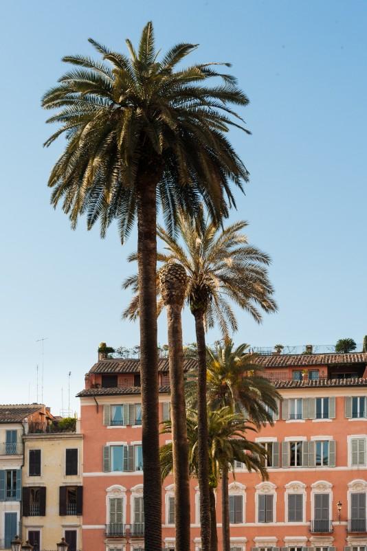 Rome2011_4744