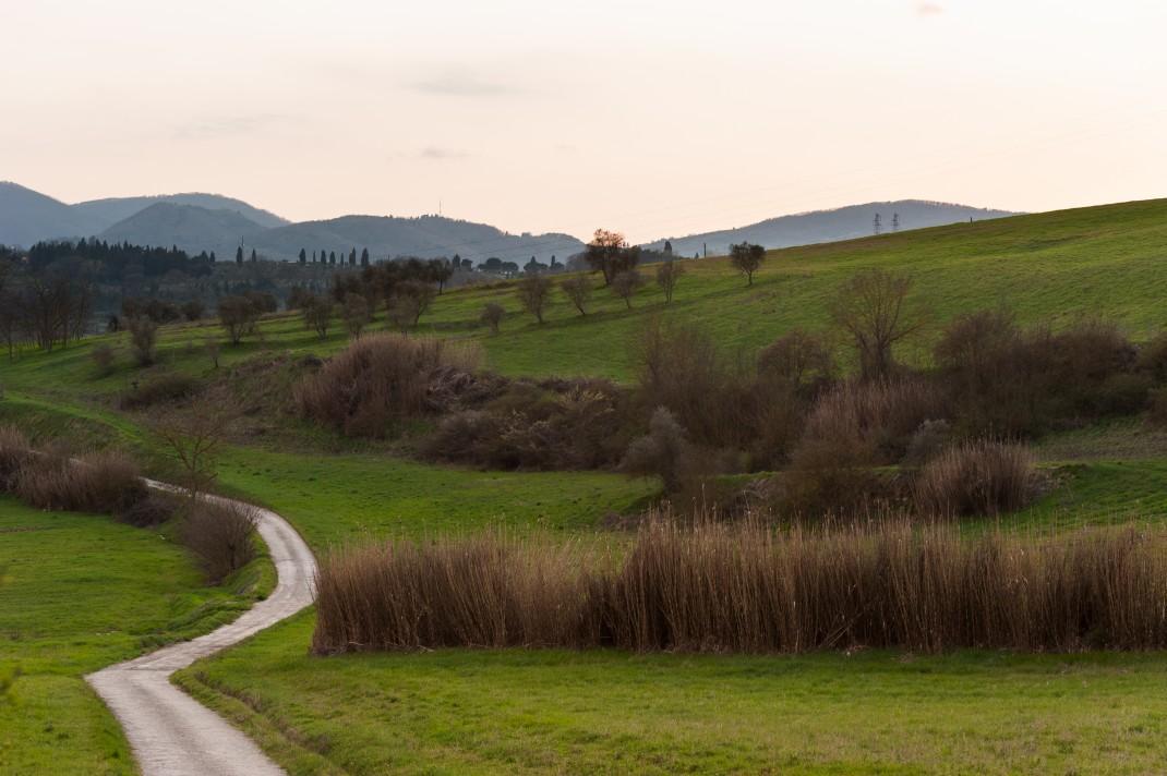 Tuscany2011_4472